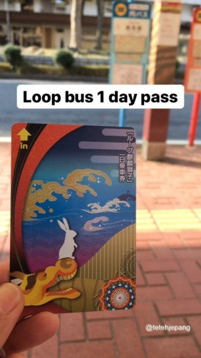 Loop bus 1 day pass